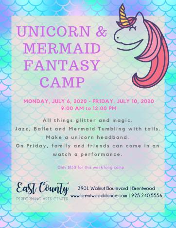 Mermaid and Unicorn Camp